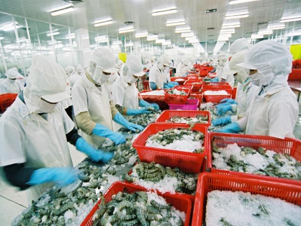 Quy trình xuất nhập khẩu hàng thủy sản đông lạnh sang thị trường Trung Quốc (25-12-2019)