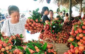 Hội chợ Quảng bá thiêu thụ Nông đặc sản vùng miền và Sản phẩm OCOP tại Hà Nội năm 2020
